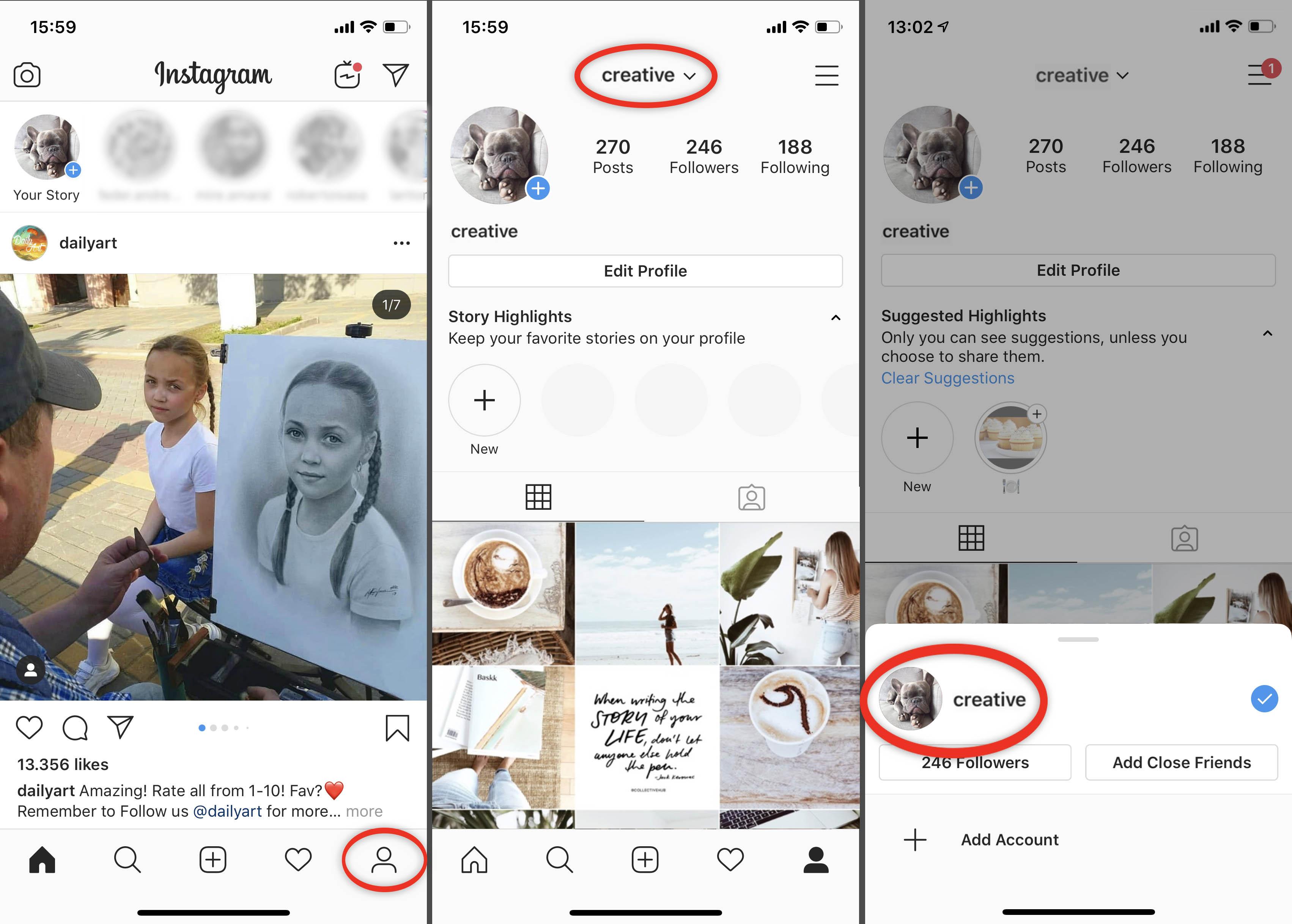 Linked Instagram accounts