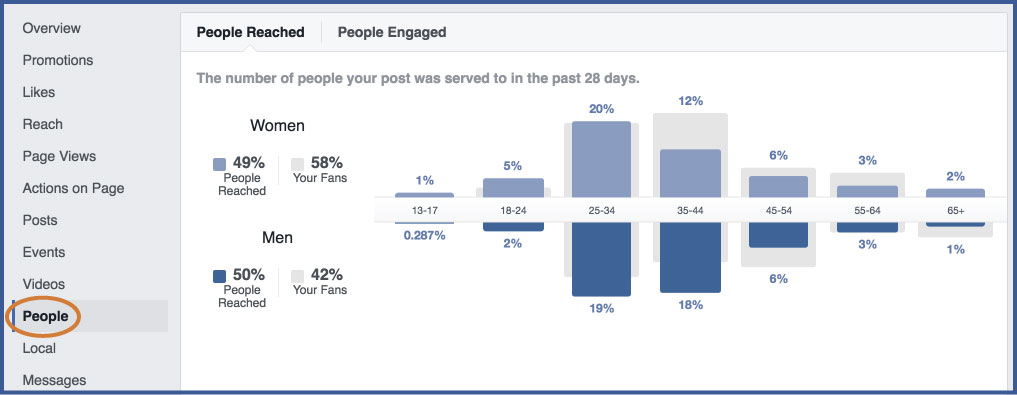 Facebook-Insights---People