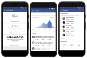 Screenshot of Facebook Group Insights