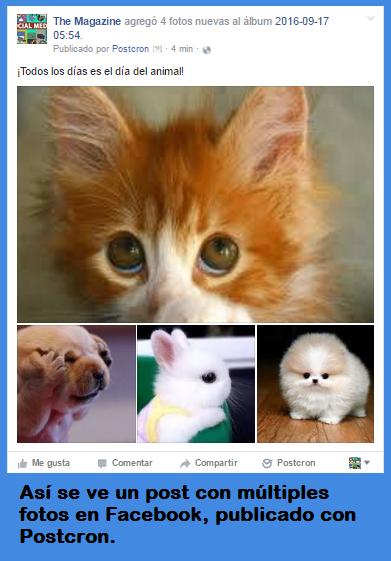 Publicar en Facebook y Publicar en Twitter posts con varias imágenes: ¿cómo hacerlo fácilmente?