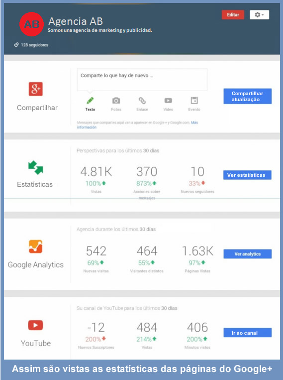 User statistics social networks - google +