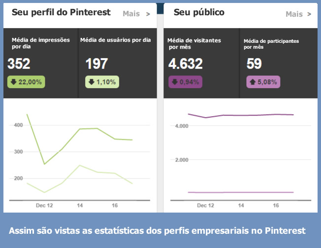 User statistics social networks - company profile pinterest